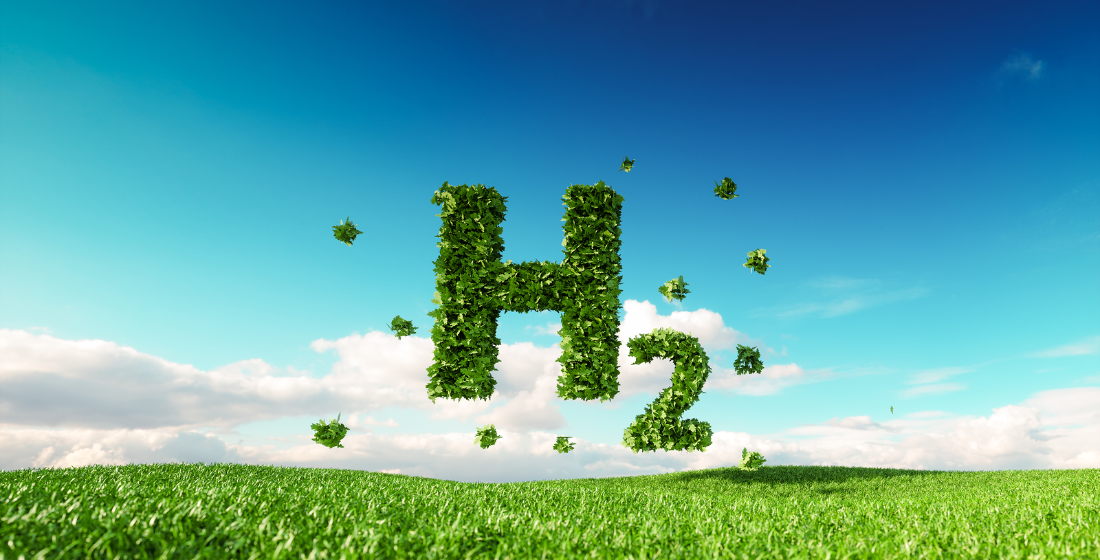 The new hydrogen and storage economy