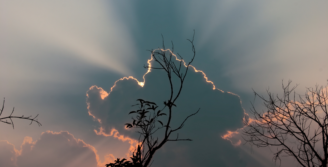 The Proximo Weekly Digest - Every silver lining also has a cloud