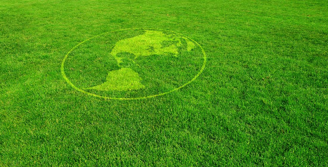 The future's green, the future's Latin?